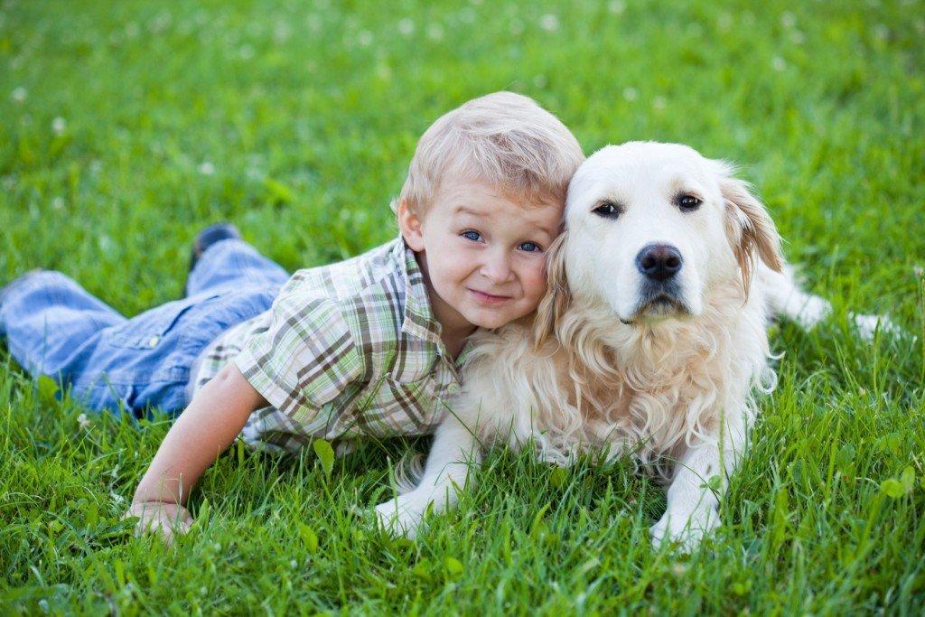 Cute toddler blonde boy with golden retriever hugging close up